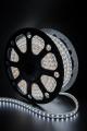 Светодиодная лента 220В LT560-W-50